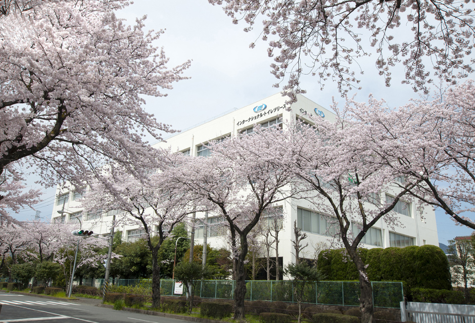 STORY 3 Cherry blossoms in spring and head office landscape